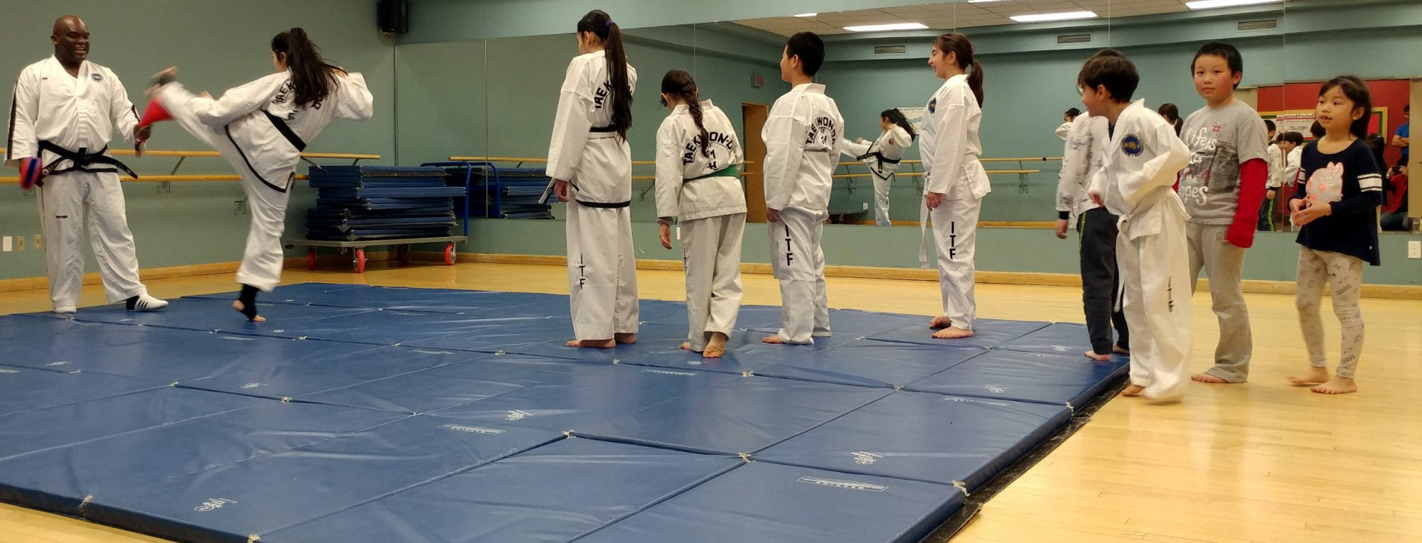 Etienne's International Taekwon-Do Academy